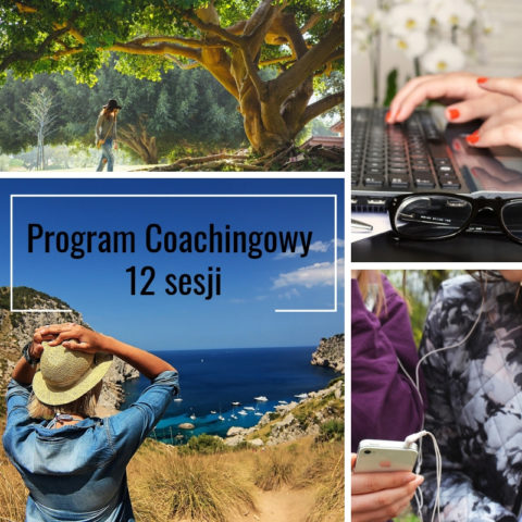 program coachingowy 12 sesji